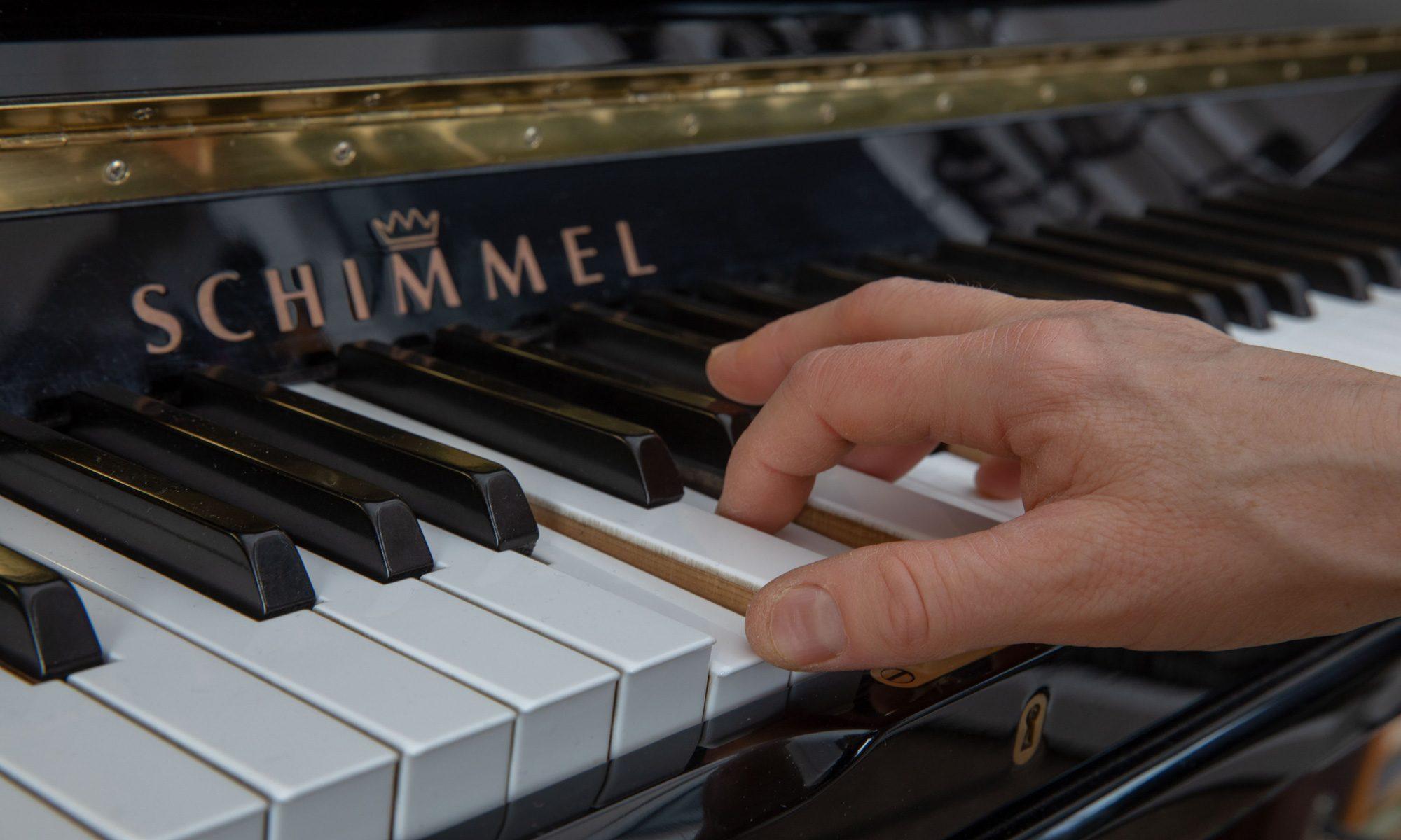 Musikschule Petra Koch - Kassel